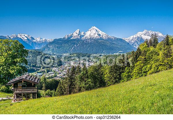 Bavarian Alps with beautiful flowers and Watzmann in springtime, Germany - csp31236264