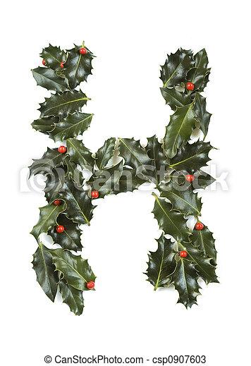 """Holly con la letra """"H - csp0907603"""