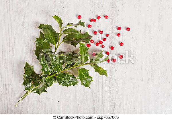 Holly y bayas rojas - csp7657005
