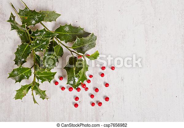 Cerezas rojas y Holly - csp7656982
