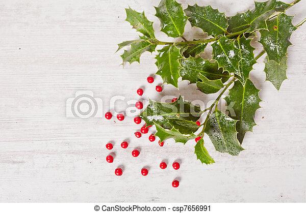 Holly y bayas rojas - csp7656991