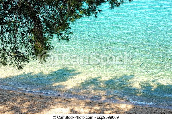 Beach and turquoise water of Aegean Sea, Halkidiki, Greece - csp9599009