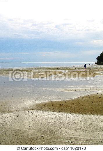 Beach at low tide - csp11628170