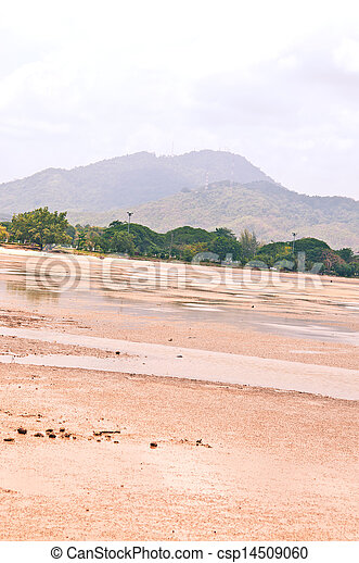 Beach at low tide. - csp14509060
