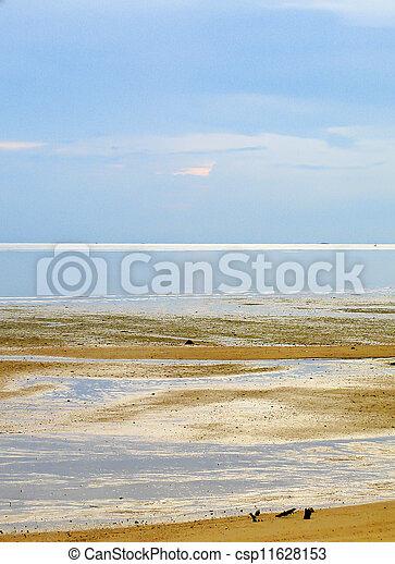 Beach at low tide - csp11628153