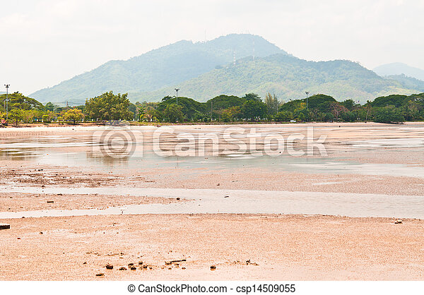 Beach at low tide. - csp14509055