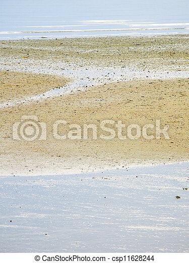 Beach at low tide - csp11628244