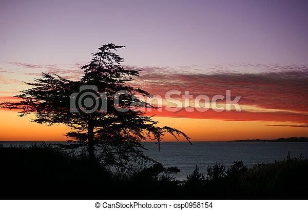 Beach at sunset - csp0958154