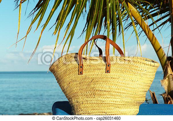 beach bag - csp26031460