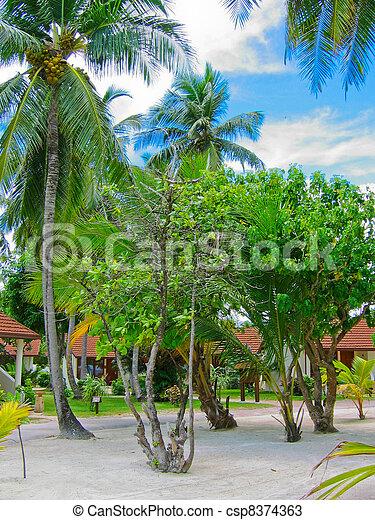 Beach bungalow - csp8374363