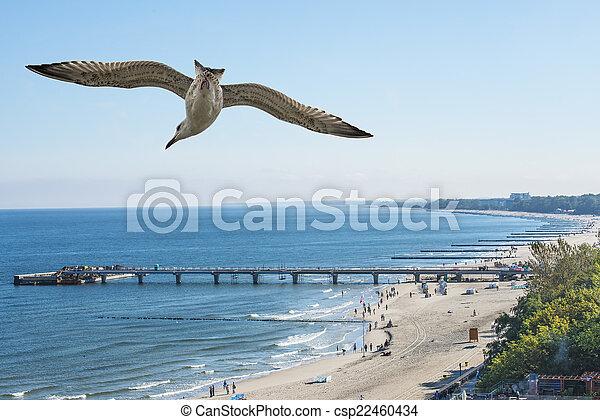 beach fo Kolobrzeg, Baltic Sea, Poland - csp22460434