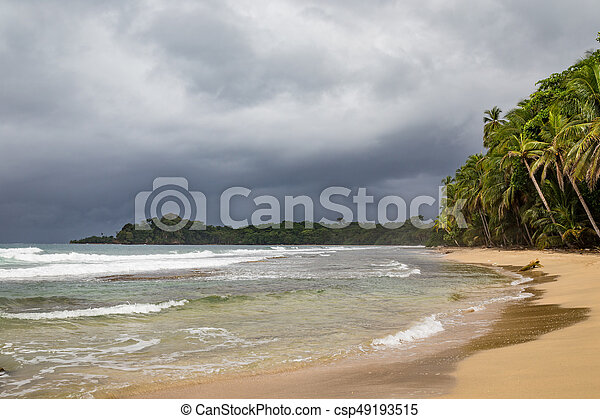 Beach forest and storm sky - csp49193515