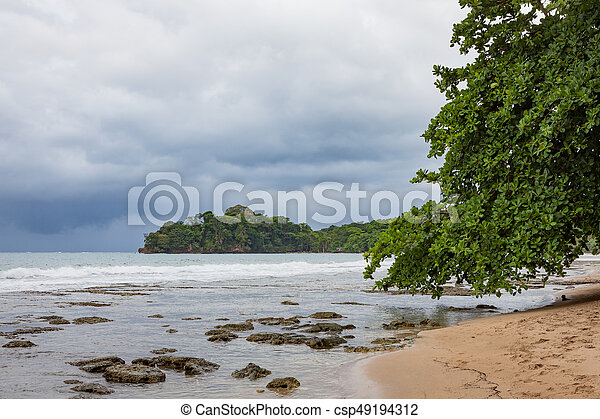 Beach forest and storm sky - csp49194312