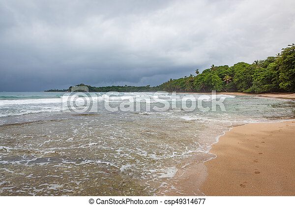 Beach forest and storm sky - csp49314677