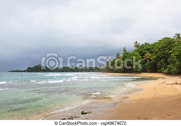 Beach forest and storm sky - csp49674672