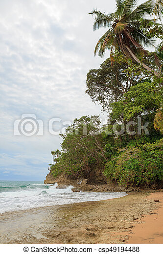 Beach forest and storm sky - csp49194488
