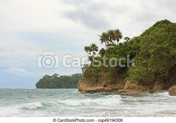 Beach forest and storm sky - csp49194306
