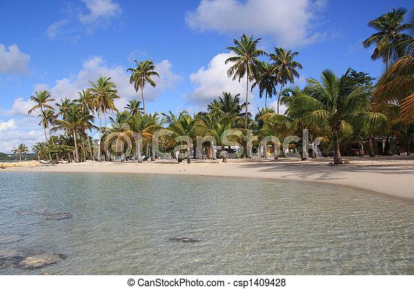 Beach - Guadeloupe (F.W.I.) - csp1409428