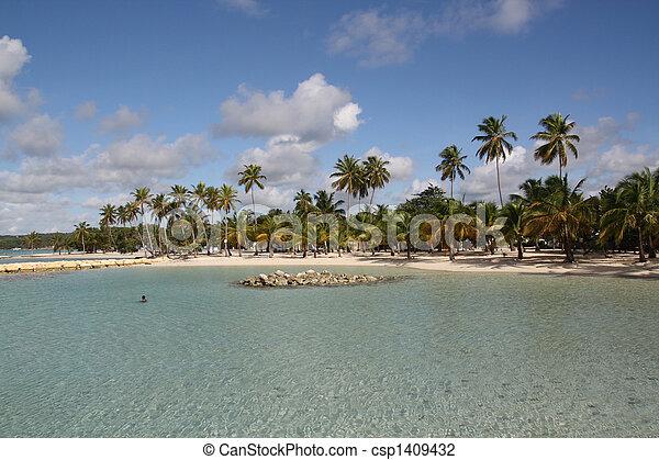 Beach - Guadeloupe (F.W.I.) - csp1409432