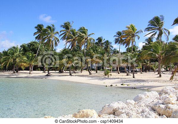 Beach - Guadeloupe (F.W.I.) - csp1409434