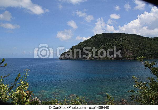 Beach - Guadeloupe (F.W.I.) - csp1409440