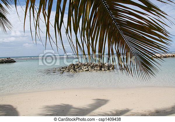 Beach - Guadeloupe - csp1409438
