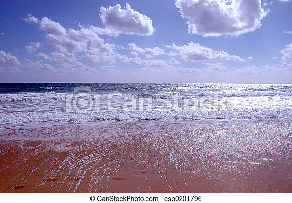 beach in winter - csp0201796