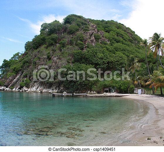 Beach - Les Saintes (F.W.I.) - csp1409451