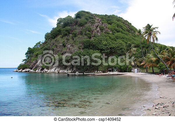 Beach - Les Saintes (F.W.I.) - csp1409452