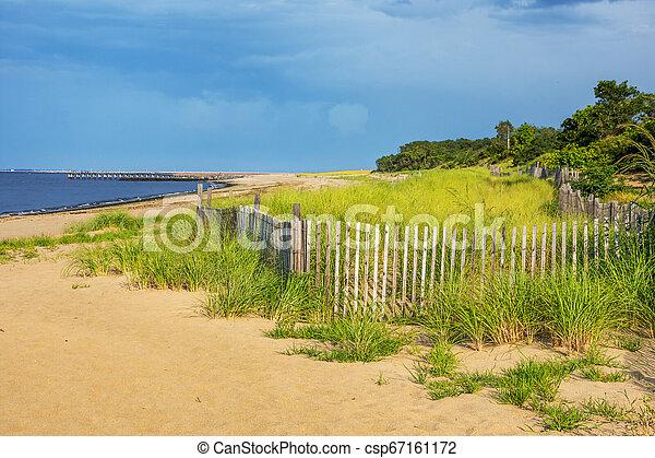 Beach Meadow - csp67161172