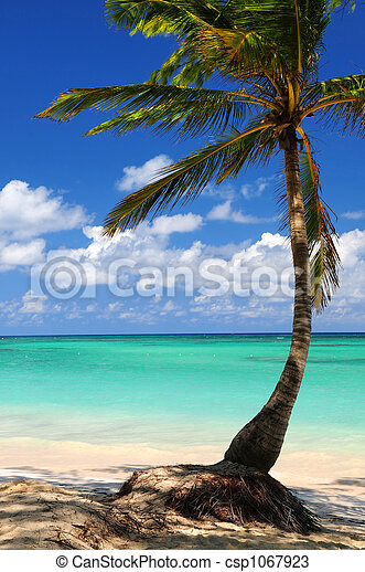 Beach of a tropical island - csp1067923