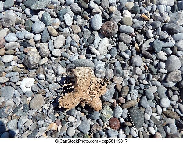 Beach of the Aegean Sea in Fethiye, Turkey - csp58143817