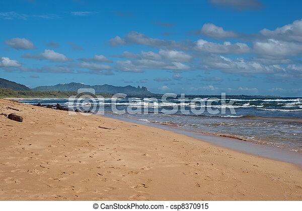 Beach on Kauai Island of Hawaii - csp8370915