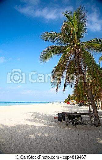 beach on the Isla Mujeres, Mexico - csp4819467