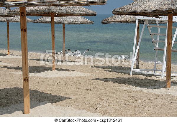 Beach - csp1312461