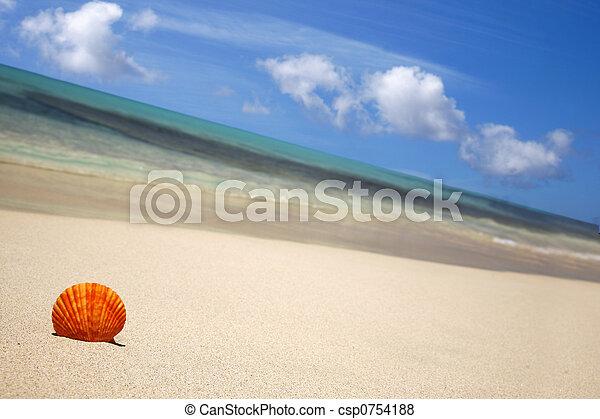 Beach - csp0754188