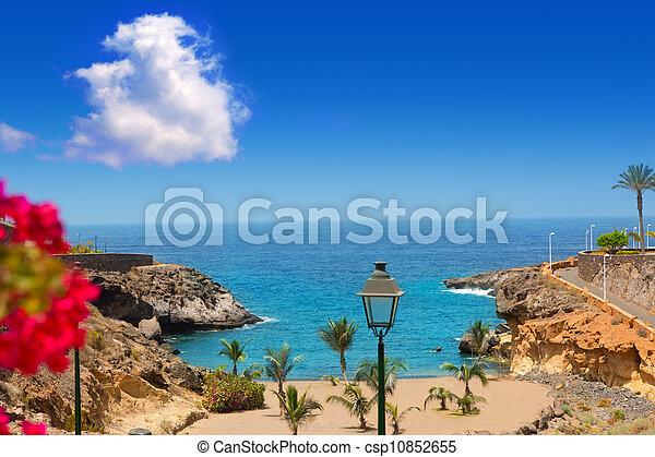 Beach Playa Paraiso costa Adeje in Tenerife - csp10852655
