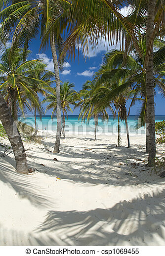 beach - csp1069455