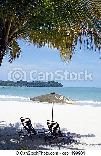 Beach - csp1199904