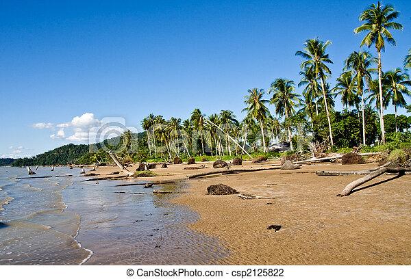 beach - csp2125822