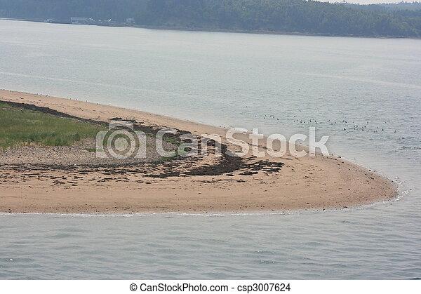 Beach - csp3007624