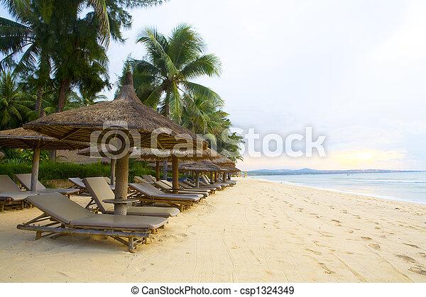 beach - csp1324349
