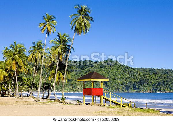 beach - csp2050289