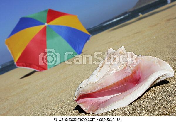 Beach - csp0554160