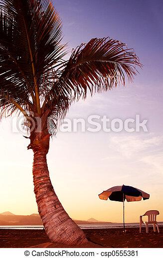 Beach Sunset - csp0555381