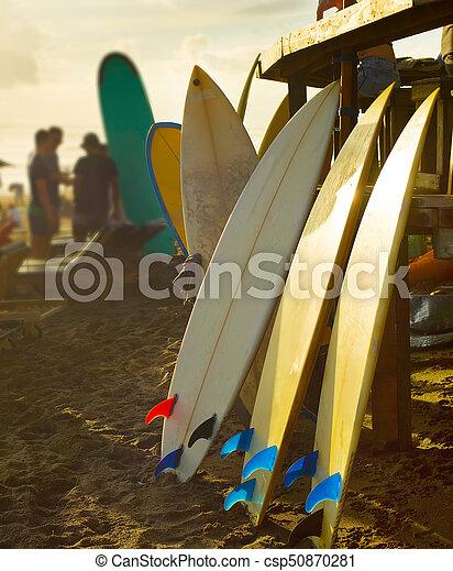 Beach surfers rental surfboards sunset - csp50870281