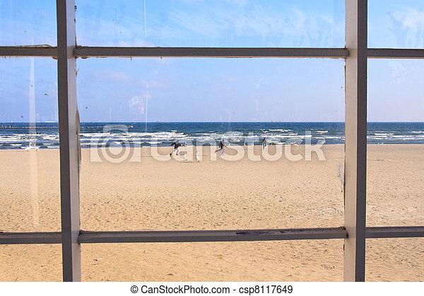 beach view through window - csp8117649