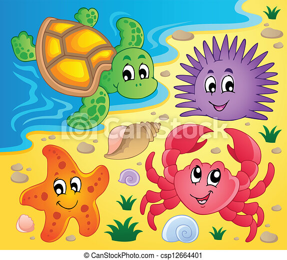 Beach with shells and sea animals 3 - csp12664401