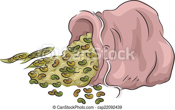 Bean Bag - csp22092439