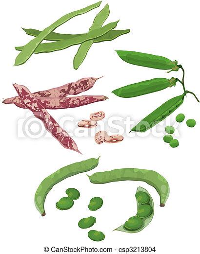 Beans - csp3213804